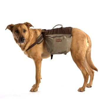 Favored Backpacks Dogs Wear For Hiking Or Just A Long Walk To ...