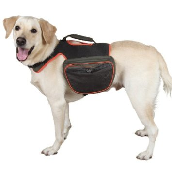 Dogs Can Carry Their Own Toys, Treats and Supplies in this Guardian Gear Reflective Dog Back Pack.