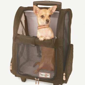 Best Dog, Pet Carrier With Wheels and Handle. Also Airline Approved.