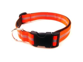 Sassy Dog Wear Adjustable Orange Dog Collar